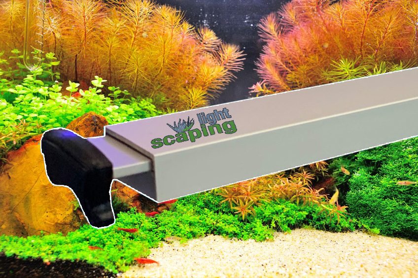 Scaping-Light basic RGB LED (dimmbares System) für Pflanzen- aquarien - CRW