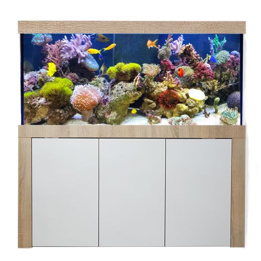 Aquariumkombination Galant 150x50x60 cm / ca. 450 Liter / 10 mm Glas