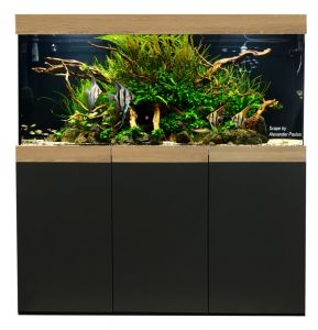 Aquarienkombination Imperial 120x60x60 cm / ca. 432 Liter / 10 mm Glas
