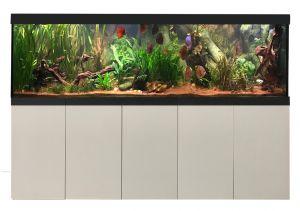 Aquarienkombination Imperial 250x60x60 cm / ca. 900 Liter / 12 mm Glas