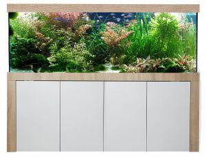 Aquariumkombination Galant 250x80x60 cm / ca. 1200 Liter / 12 mm Glas