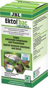 JBL Ektol bac Plus 250